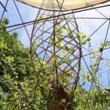 De-la-Plume-A-la-Bêche_La-Cabane-Polypode_Jardins-Jardin-2015©DPAB-8