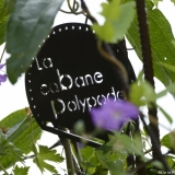 De-la-Plume-A-la-Bêche_La-Cabane-Polypode_Rue-Croulebarbe-Paris-13_Vue-3©Luc-Monnet